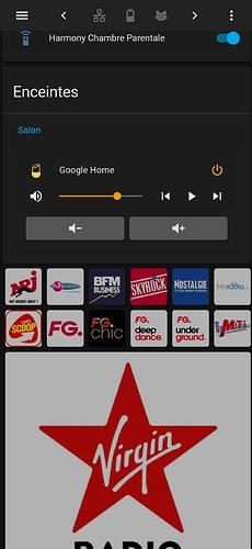 Screenshot_2020-10-17-19-00-21-741_io.homeassistant.companion.android